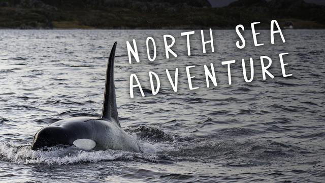 North Sea Adventure