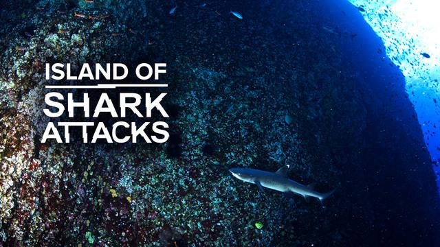 The Island of Shark Attacks