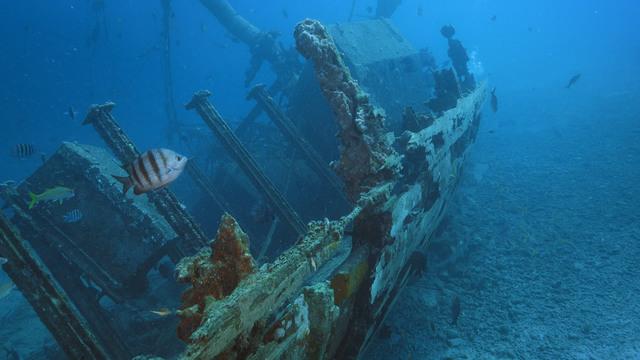 Reef Wrecks Of Bonaire