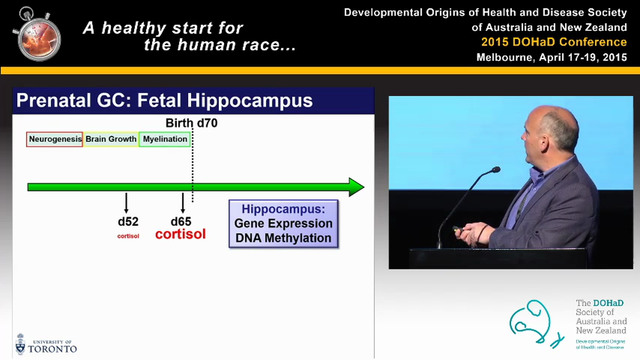 Early life programming of stress resp...