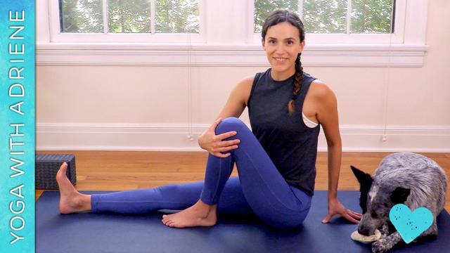 Yoga For Beginners - Basics